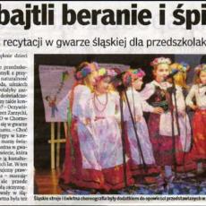 DZIENNIK ZACHODNI - DODATEK  CHORZÓW 26.11.2010.